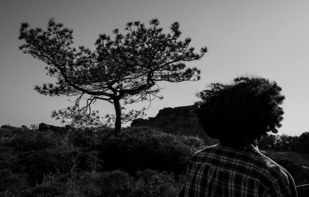 © Nabil Attia