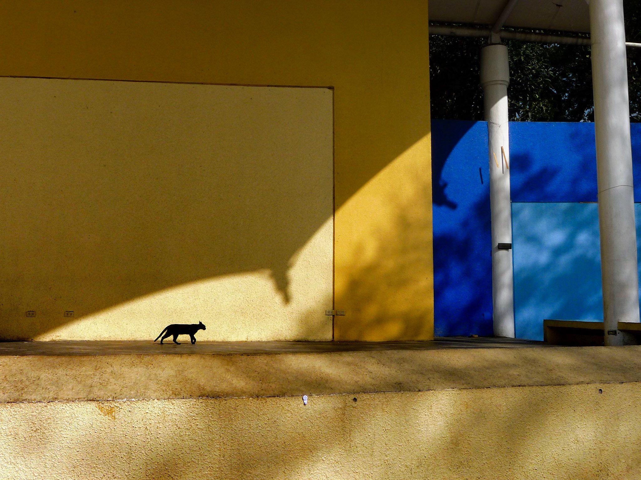 ©Arth Figueroa Jumagdao
